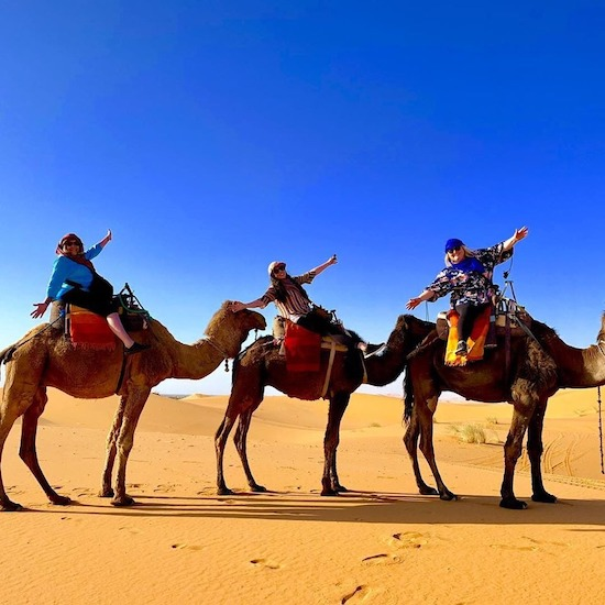 discovery morocco travel